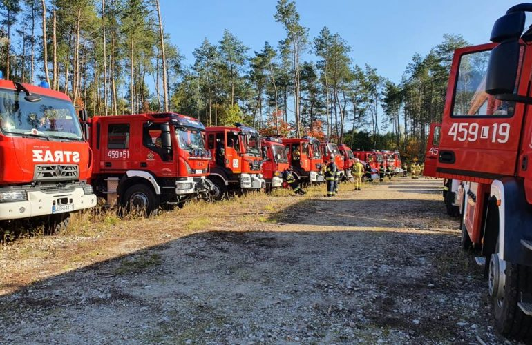 Kilkanaście samochodów ratowniczo-gaśniczych straży pożarnej na tle lasu